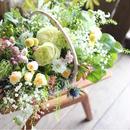 mother'sday  季節のお花のアレンジメント