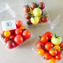 有機JAS Mixミニトマト