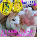にゃんこ肉球イニシャル入り 高級クリスタルストラップ(化粧箱付)(寄付代込)