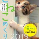 こねこめくり2019