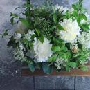 各種お祝いにも!木曜ー日曜到着/白×グリーン・季節のアレンジメント