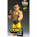UFC ラウンド5 Round 5 フィギュア おもちゃ World of MMA Champions Series 4 Cung Le Exclusive Action Figure