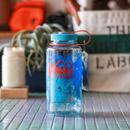 REI  Nalgene  Wide  Water Bottle 'DENALI National park'
