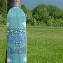 DOWNCHILL Skate Deck < E4 > Limited color GREEN