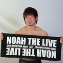 NOAH THE LIVEタオル