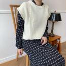 ✳︎予約販売✳︎cable knit vest/3colors