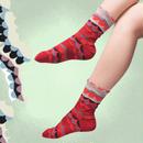 【nonnette】Like a wing  Socks NS189Y