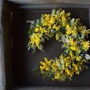 野の花屋 ミモザクレッセントリース