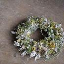 野の花屋 ホワイトリース