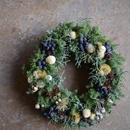 野の花屋  針葉樹のホワイトクリスマス
