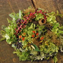 野の花屋 オーバルリース アナベルと実物を添えて