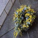 野の花屋 ミモザオーバル型リース