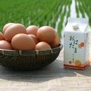 【鎌田醤油】たまごかけ専用おはたま醤油7本