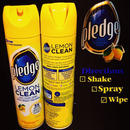 Johnsonn plrdge-LEMON CLEAN-