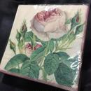 PaperTowel Rose