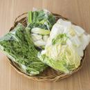 宮崎産の美味しい野菜セット(オプション)(12月〜4月)
