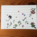 メロディd (PostCard)