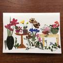 メッセージカード ガーデンM01(2つ折り/封筒付)