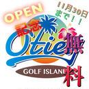 オープン記念☆95%off リシャフト