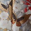 【袷・振袖】紅暈し蘭系花と蝶々のお振袖