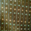 【袷】ココア色 縞にピンクと水色のドット 小紋