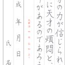 ★ダウンロード販売★[¥100]ペン字【楷書】~『水仙』太宰治~より