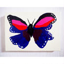 蝶々(赤と青)