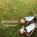 ★ 犬服雑貨petitchien  ★2018.4.5【Information】