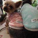 犬服 ★完成品【パイル水玉】 ピンク 胴まわり30~38cm