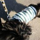 犬服【シンプルボーダー イカリ】グリーン胴回り30~38cm