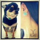 Turquoise flower pierce -PLAFU with pet- お揃いピアス