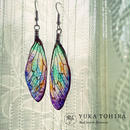【蝉】Cicada Pierce - Multicolor Gradation -
