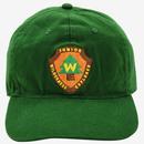 【USA直輸入】DISNEY カールじいさんの空飛ぶ家 UP ウィルダネス エクスプローラーズ ダッド ハット キャップ 帽子 スナップバック  ラッセル ダグ