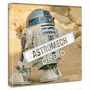 【アートデリ】STARWARS R2-D2 スターウォーズ ファブリックボード ポスター   壁掛け インテリア