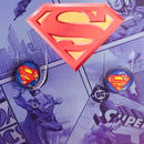 【USA直輸入】DCコミックス スーパーマン スタッド ピアス 正規品