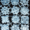 ドイツ ドレスデン ホイル 紋章 青 12セット