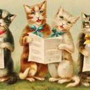 ◆リボン猫の楽しいコーラス♪◆アンティークポストカード◆