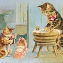 ◆H.Maguire ママのお洗濯のそばでお人形をだっこする可愛い子猫◆アンティークポストカード