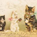 ◆H.Maguire パパの真似をしてパイプを吹く子猫たち◆アンティークポストカード
