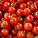 千果トマト(赤) 1kg 6~7月限定