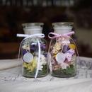 Medicine bottle flower  メディスンボトルフラワー(M)