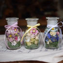 Medicine bottle flower  メディスンボトルフラワー(S)