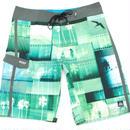 【REEF】BREEZE Swim Pants  color:Green