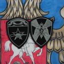 ロシア国家親衛隊 Rosgvardia (VV) モスクワ軍管区 スペツナズ用 両腕パッチ シルバー