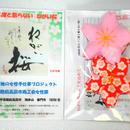 鎮魂の「ねがい桜」(二度と散らない桜) 2個セット(ネコポスにて発送・送料込み) 18550個限定販売