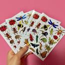 虫 ムシ キラキラ シール 4枚セット sticker bug insect