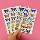 蝶々 キラキラ シール 3枚セット ステッカー BUTTERFLY STICKER