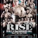 【 S 席 】2018.2.4 / RISE122 大会チケット