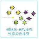 細胞診検査+HPV検査+性感染症検査