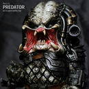 Petit Predator 完成品
